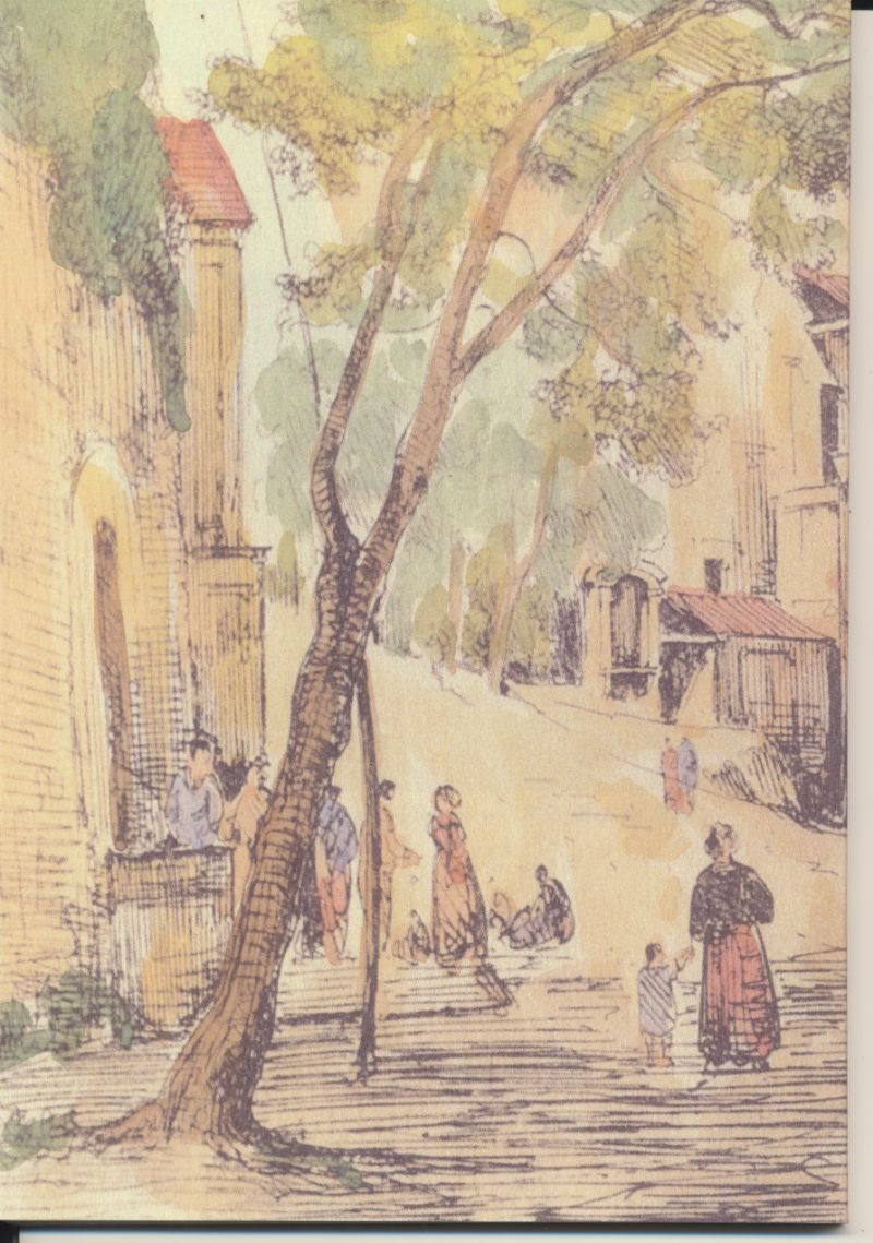 Cosenza-Giuseppe---Raccolta-di-Antichità-Stabiane